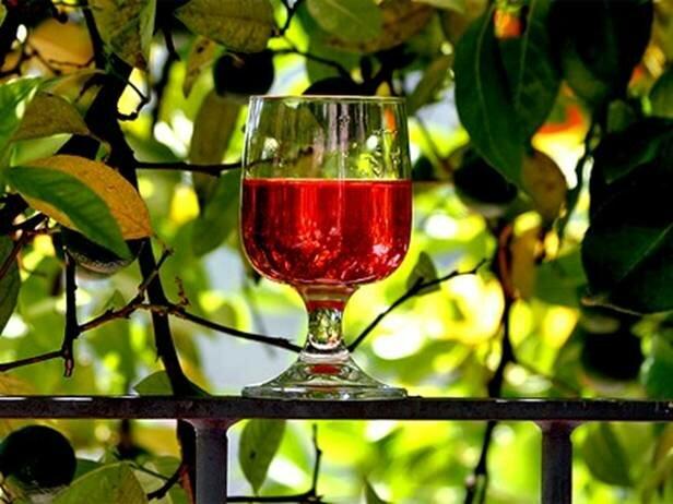 Как сделать своё виноградное вино